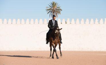 LaurentVilbert madame à marrakech
